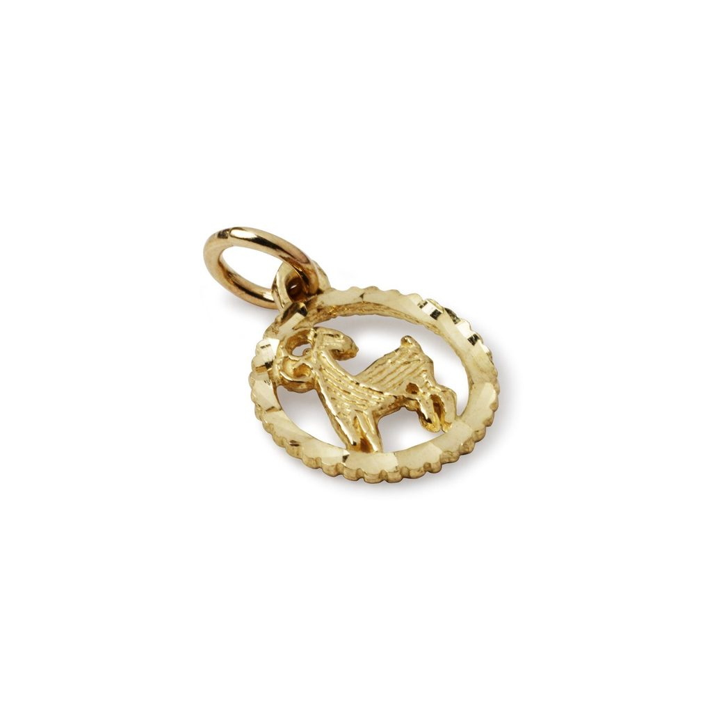 Suetables 'Shirley' horoscope pendant